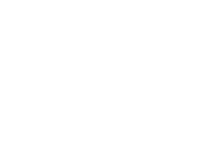 Hopey & Co. White Logo